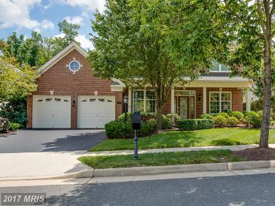 Haymarket Single Family Home For Sale: 5109 Faldo Drive