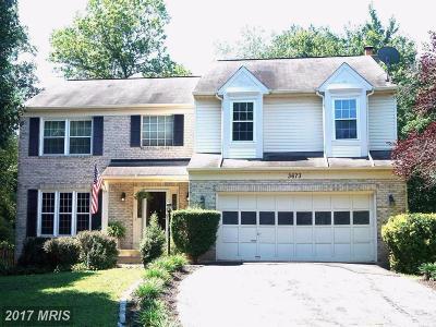 Single Family Home For Sale: 3673 Hetten Lane