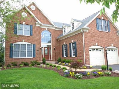 Haymarket Single Family Home For Sale: 15125 Jupiter Hills Lane