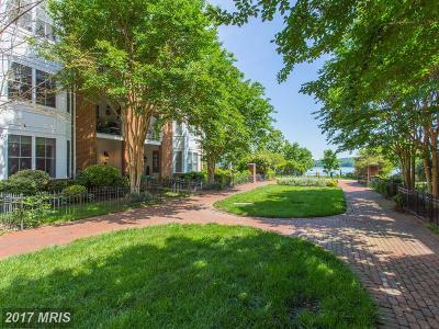 Woodbridge Townhouse For Sale: 474 Belmont Bay Drive