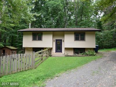 Haymarket Single Family Home For Sale: 15701 Nelson Drive