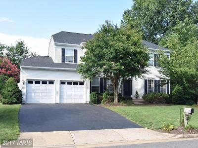 Bristow Single Family Home For Sale: 12550 Chippenham Court