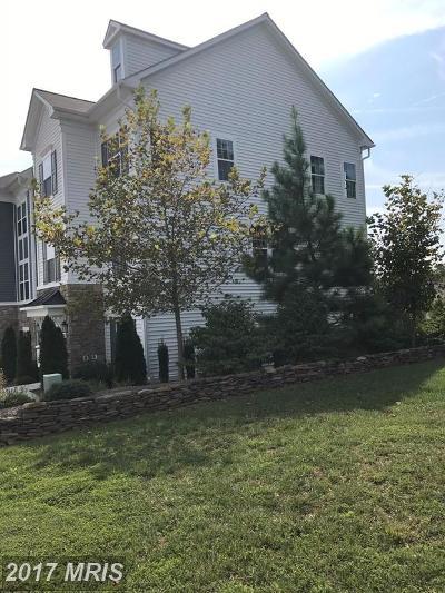 Virginia Oaks Single Family Home For Sale: 7899 Virginia Oaks Drive