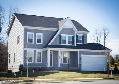 Dumfries Single Family Home For Sale: 17942 Woods View Drive