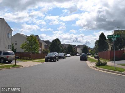Gainesville Rental For Rent: 12088 Paper Birch Lane