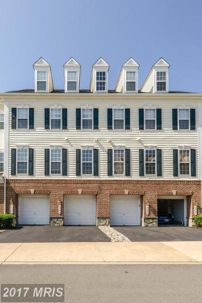 Gainesville Rental For Rent: 6783 Hampton Bay Lane #302