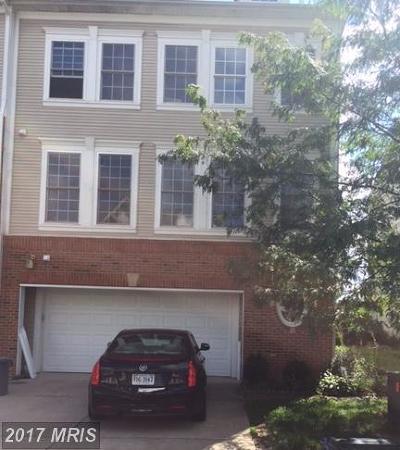 Bristow VA Rental For Rent: $1,950