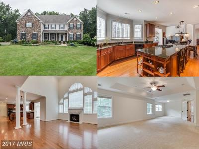 Haymarket Single Family Home For Sale: 2800 Meander Creek Lane
