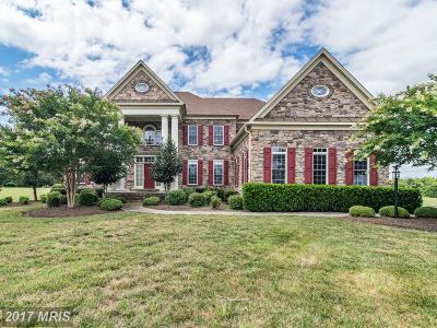 Bristow VA Single Family Home For Sale: $799,999