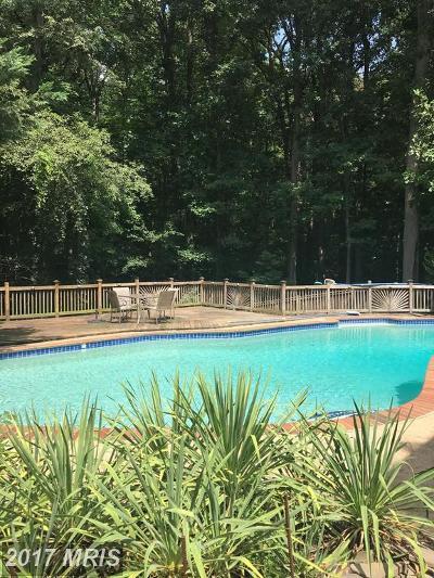 Bristow, Gainesville, Haymarket, Woodbridge, Occoquan, Manassas, Nokesville Single Family Home For Sale: 4120 Hemingway Drive