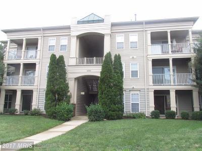 Woodbridge Condo For Sale: 1031 Gardenview Loop #201
