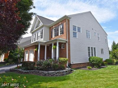 Haymarket Single Family Home For Sale: 14258 Wythridge Way