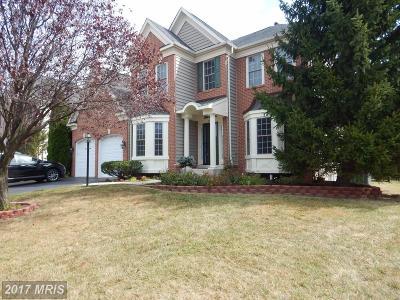 Haymarket Single Family Home For Sale: 6406 Ashby Grove Loop