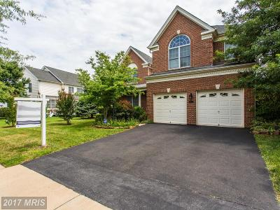 Haymarket Single Family Home For Sale: 5505 Hillsman Farm Lane