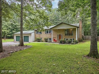 Nokesville Single Family Home For Sale: 13891 Amy Lane
