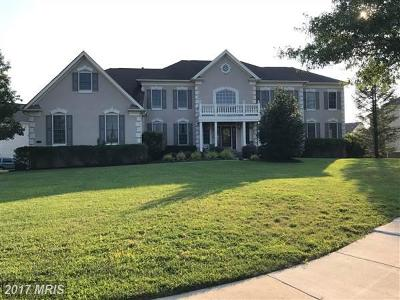 Haymarket Single Family Home For Sale: 6000 Empire Lakes Court