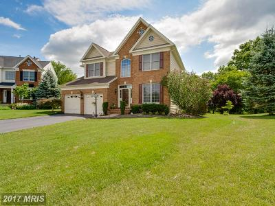 Dominion Valley Country, Dominion Vall Contry Clb Single Family Home For Sale: 5693 Olympia Fields Place