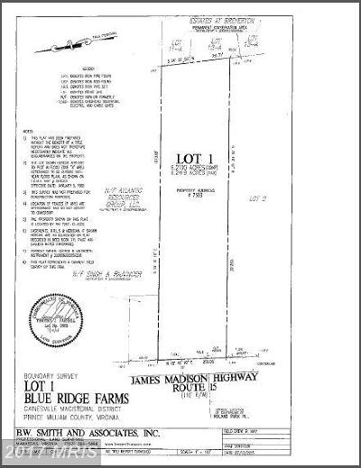 Gainesville Residential Lots & Land For Sale: 7503 James Madison Highway