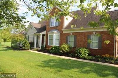 Bristow, Haymarket, Gainesville, Nokesville, Bealeton, Manassas Rental For Rent: 5721 Wheelwright Way