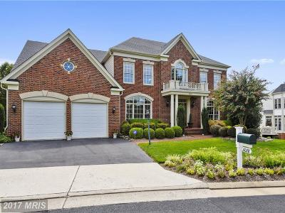 Haymarket Single Family Home For Sale: 6028 Erinblair Loop