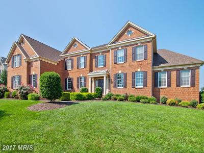 Haymarket VA Single Family Home For Sale: $874,999