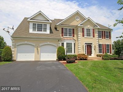 Manassas Single Family Home For Sale: 8546 Saltlick Terrace