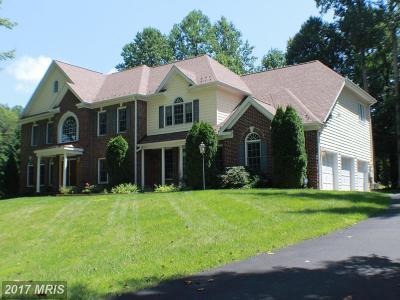 Manassas Single Family Home For Sale: 10046 Esteppe Drive