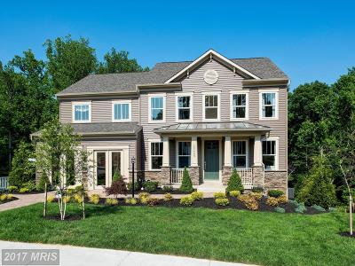 Prince William Single Family Home For Sale: 19223 Stoney Ridge Place