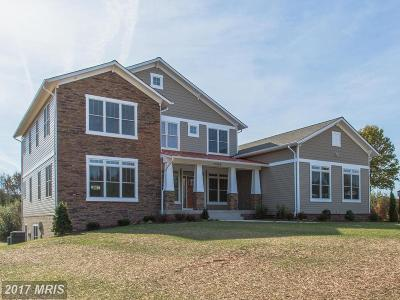 Nokesville Single Family Home For Sale: 12559 Homestead Drive