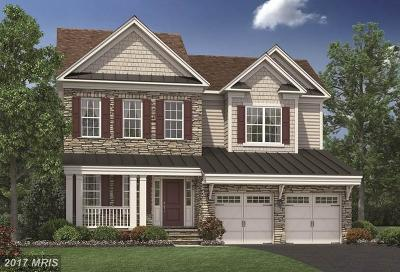 Haymarket Single Family Home For Sale: 5532 Blackburns Ford Court