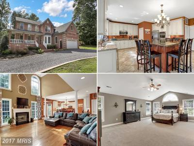 Manassas Single Family Home For Sale: 6450 Marshall Court