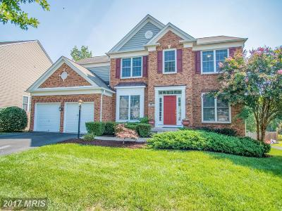 Manassas Single Family Home For Sale: 10868 Mayfield Trace Place