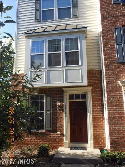 Gainesville VA Rental For Rent: $1,900