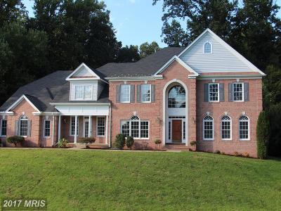 Manassas Single Family Home For Sale: 10117 Carlington Valley Court