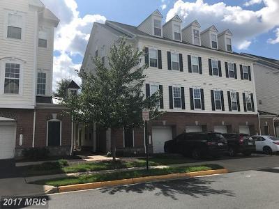 Gainesville VA Rental For Rent: $1,850