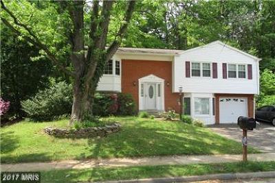 Woodbridge Single Family Home For Sale: 13324 Nassau Drive
