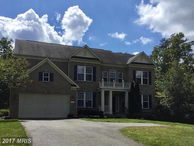 Manassas Single Family Home For Sale: 6660 Passage Creek Lane