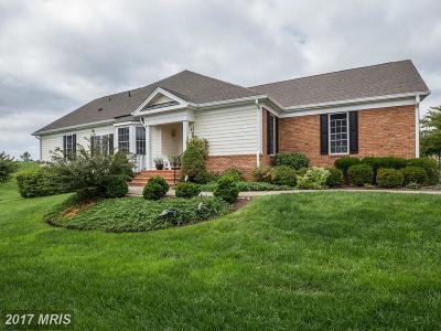 Haymarket VA Townhouse For Sale: $545,000