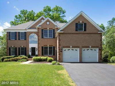 Haymarket VA Single Family Home For Sale: $684,900