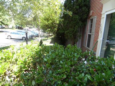 Bristow VA Rental For Rent: $1,700