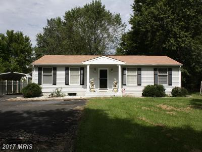 Manassas Single Family Home For Sale: 8008 Leland Road