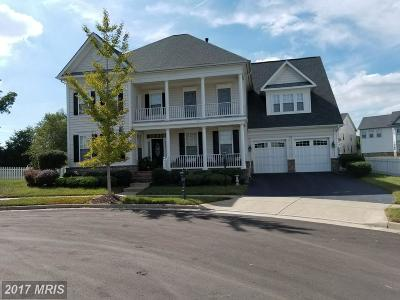 Bristow Single Family Home For Sale: 10938 A P Hill Court