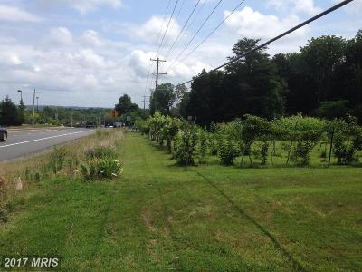 Bristow VA Single Family Home For Sale: $799,900
