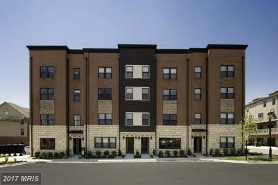 Prince William Townhouse For Sale: Ames Drive
