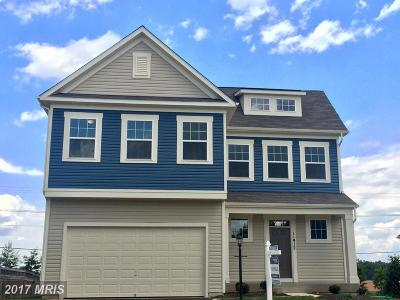 Bristow Single Family Home For Sale: 11912 Blue Violet Way