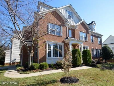 Haymarket Single Family Home For Sale: 6813 Coach Way