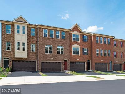 Haymarket VA Townhouse For Sale: $419,850