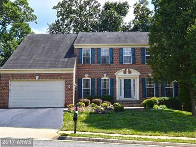 Bristow Single Family Home For Sale: 10103 Tummel Falls Drive