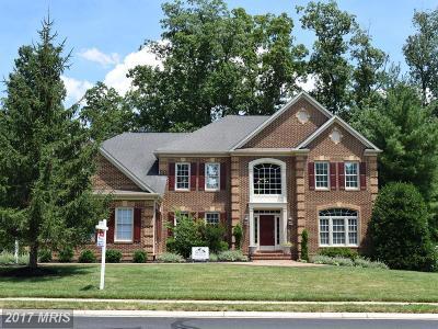 Haymarket Single Family Home For Sale: 13237 Piedmont Vista Drive