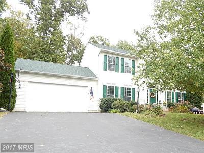 Manassas Single Family Home For Sale: 7404 Howell Run Court